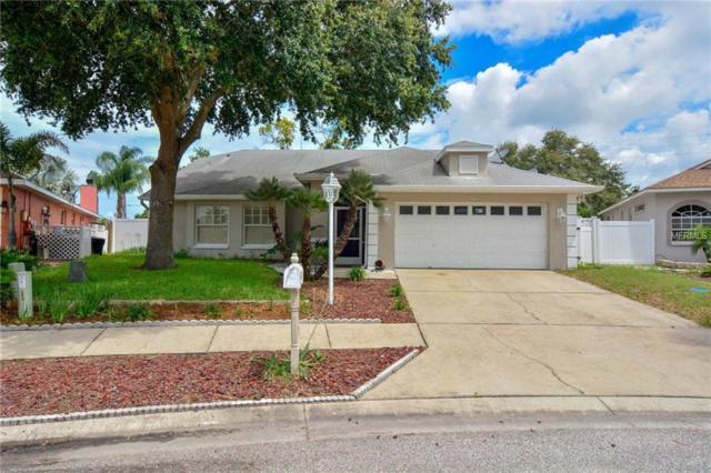 398 Wood Chuck Avenue, Tarpon Springs, FL 34689 (MLS #T3112660) :: Lovitch Realty Group, LLC