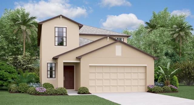 13911 Arbor Pines Drive, Riverview, FL 33579 (MLS #T3112717) :: The Duncan Duo Team