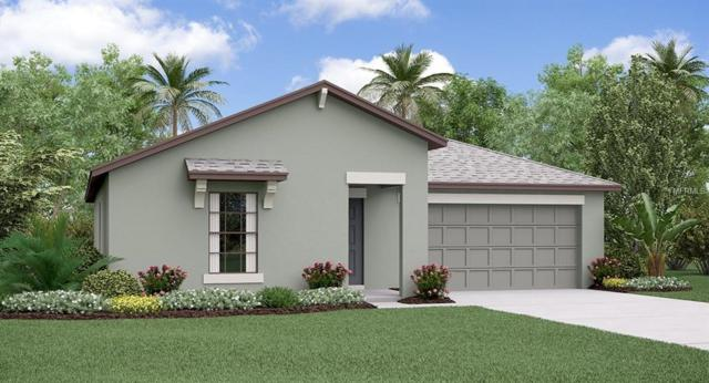 14130 Covert Green Place, Riverview, FL 33579 (MLS #T3112743) :: The Duncan Duo Team