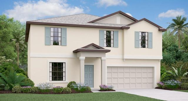 14119 Covert Green Place, Riverview, FL 33579 (MLS #T3112762) :: The Duncan Duo Team
