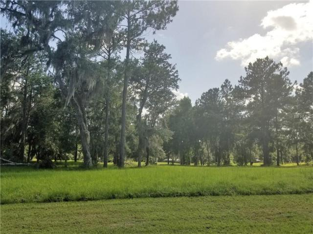4505 Hickory Oak Drive, Brooksville, FL 34601 (MLS #T3112819) :: The Price Group