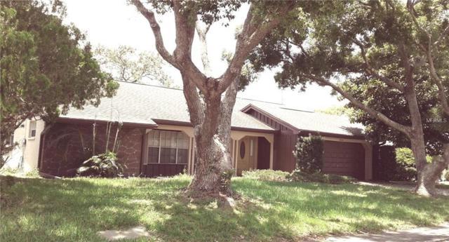 8502 Sunflower Lane, Hudson, FL 34667 (MLS #T3112820) :: The Lockhart Team
