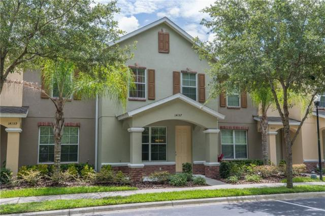 14157 Stowbridge Avenue, Tampa, FL 33626 (MLS #T3112914) :: Griffin Group