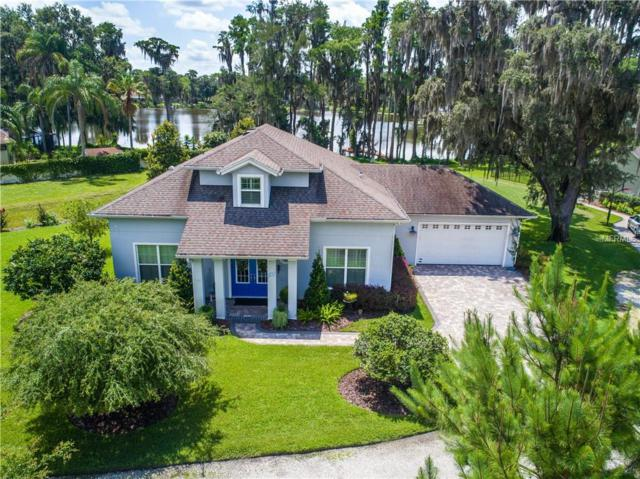 18311 Owl Drive, Lutz, FL 33548 (MLS #T3113043) :: Griffin Group