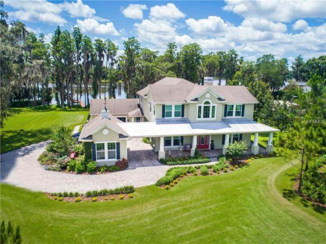 18302 Owl Drive, Lutz, FL 33548 (MLS #T3113069) :: Griffin Group