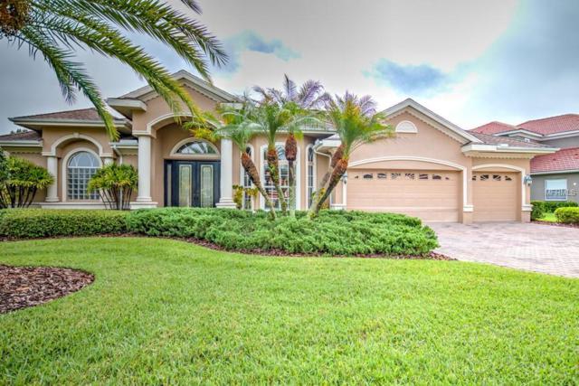 10713 Cory Lake Drive, Tampa, FL 33647 (MLS #T3113166) :: Team Bohannon Keller Williams, Tampa Properties