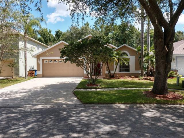 8608 Buttonbush Court, Tampa, FL 33647 (MLS #T3113209) :: Team Bohannon Keller Williams, Tampa Properties