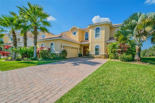 18056 Cozumel Isle Drive, Tampa, FL 33647 (MLS #T3113252) :: Team Bohannon Keller Williams, Tampa Properties