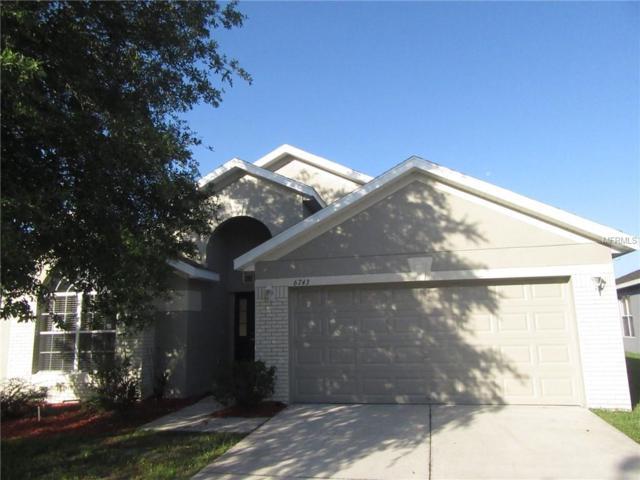 6743 Runner Oak Drive, Wesley Chapel, FL 33545 (MLS #T3113328) :: The Duncan Duo Team