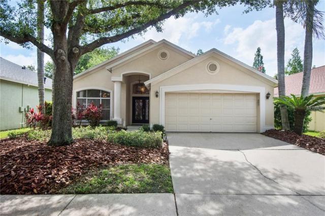 12006 Oaksbury Drive, Tampa, FL 33626 (MLS #T3113345) :: Cartwright Realty