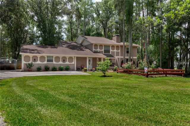 19003 Cedar Lane, Lutz, FL 33548 (MLS #T3113378) :: Team Bohannon Keller Williams, Tampa Properties