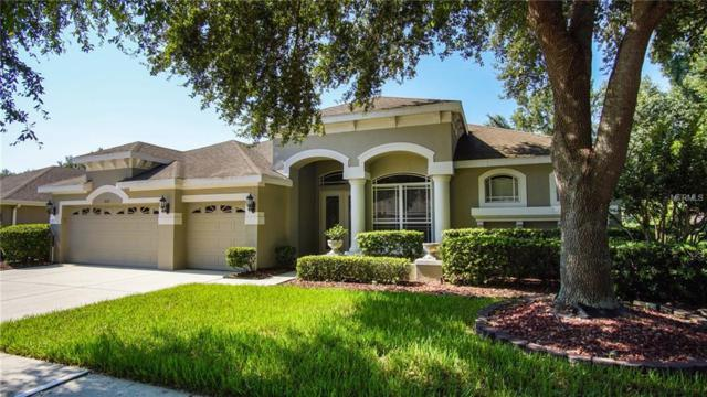 2033 Wexford Green Drive, Valrico, FL 33594 (MLS #T3113444) :: Griffin Group