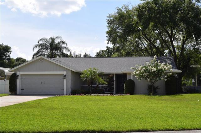 22421 Southshore Drive, Land O Lakes, FL 34639 (MLS #T3113445) :: Cartwright Realty