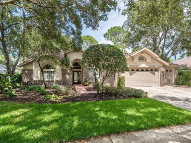 7106 Wareham Drive, Tampa, FL 33647 (MLS #T3113493) :: Team Bohannon Keller Williams, Tampa Properties