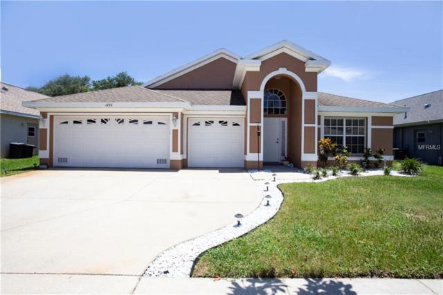 1236 Salt Lake Drive, Tarpon Springs, FL 34689 (MLS #T3113499) :: Revolution Real Estate