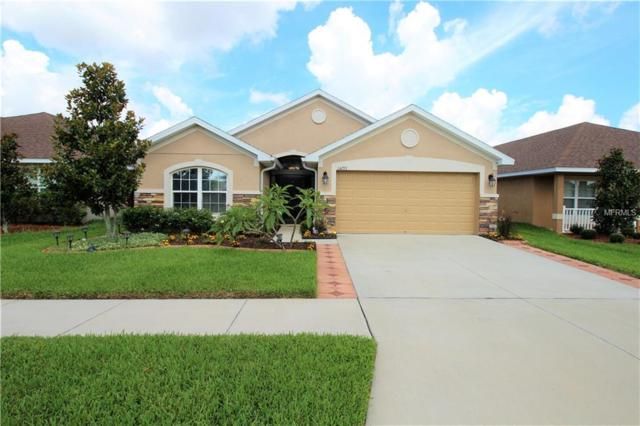 14233 Edinburgh Moor Drive, Wimauma, FL 33598 (MLS #T3113582) :: The Lockhart Team