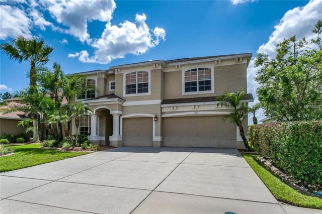 3547 Morgans Bluff Court, Land O Lakes, FL 34639 (MLS #T3113620) :: Team Bohannon Keller Williams, Tampa Properties