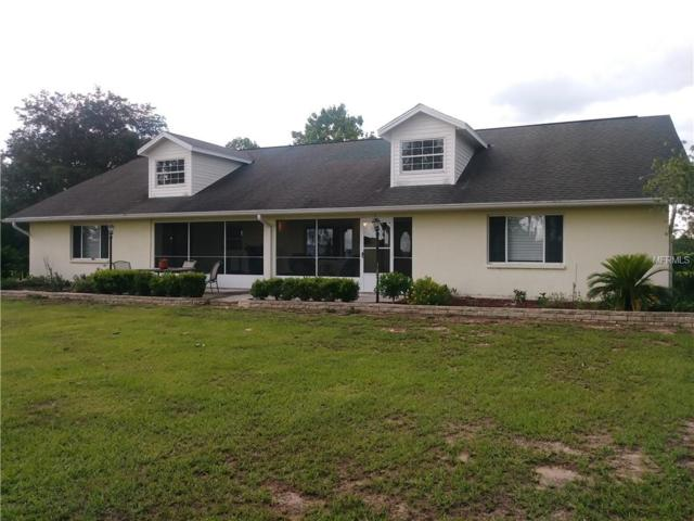 36314 Florrie Mae Lane, Dade City, FL 33523 (MLS #T3113634) :: The Price Group