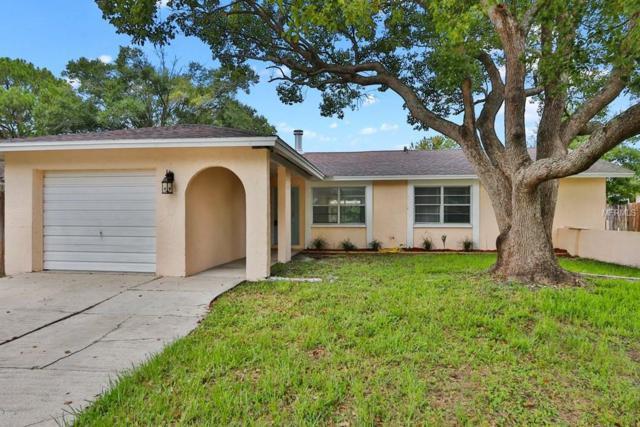 14312 Arbor Hills Road, Tampa, FL 33625 (MLS #T3113648) :: The Duncan Duo Team
