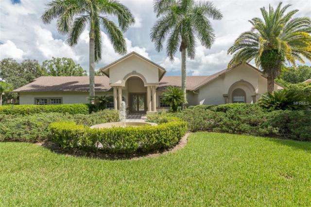 16305 Avila Boulevard, Tampa, FL 33613 (MLS #T3113682) :: Team Bohannon Keller Williams, Tampa Properties