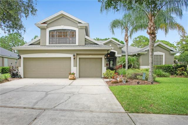 3317 Cypress Landing Drive, Valrico, FL 33596 (MLS #T3113685) :: Griffin Group