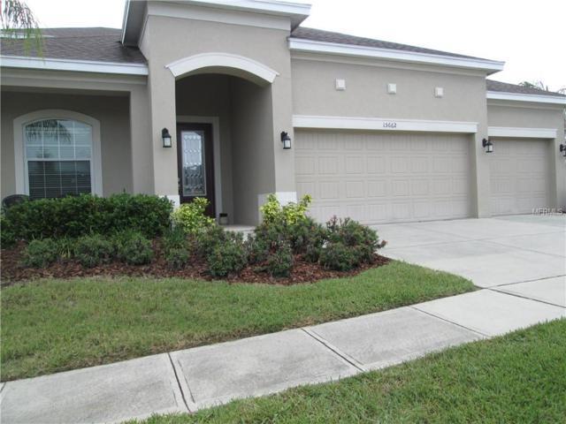 15662 Hawks Crest Loop, Odessa, FL 33556 (MLS #T3113700) :: The Lockhart Team