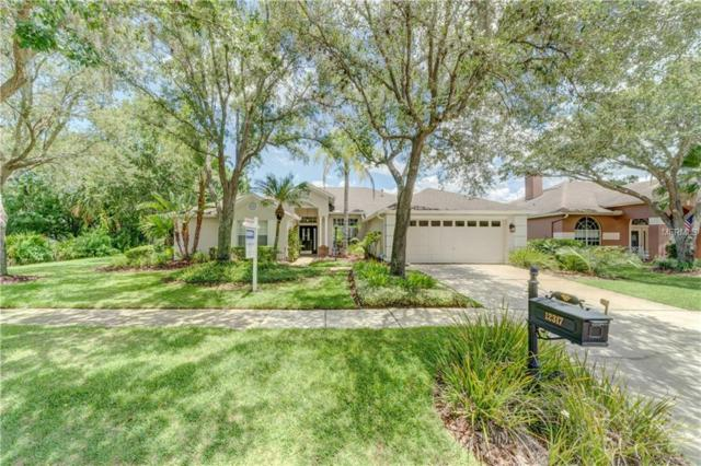 12317 Ashville Drive, Tampa, FL 33626 (MLS #T3113734) :: Gate Arty & the Group - Keller Williams Realty