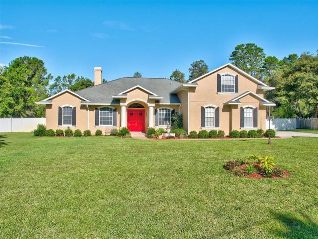 Address Not Published, Riverview, FL 33569 (MLS #T3113744) :: The Duncan Duo Team