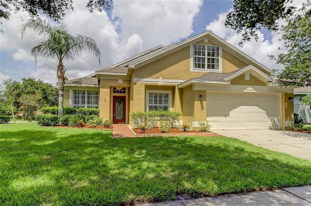 10510 Weybridge Drive, Tampa, FL 33626 (MLS #T3113769) :: Team Bohannon Keller Williams, Tampa Properties