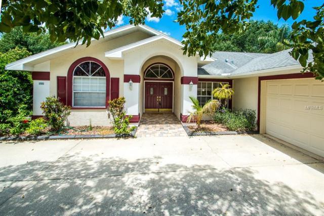 Address Not Published, Trinity, FL 34655 (MLS #T3113774) :: The Lockhart Team