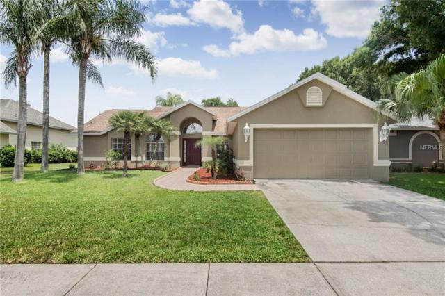 22852 Sterling Manor Loop, Lutz, FL 33549 (MLS #T3113833) :: Griffin Group