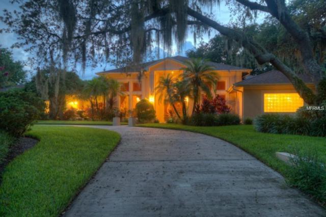 16504 Villespin De Avila, Tampa, FL 33613 (MLS #T3113874) :: Team Bohannon Keller Williams, Tampa Properties