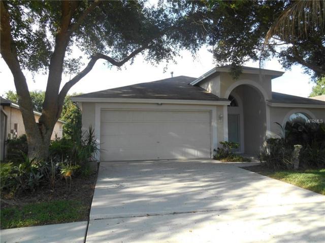 1656 Wakefield Drive, Brandon, FL 33511 (MLS #T3113937) :: Griffin Group