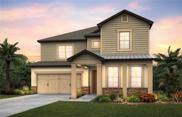 18760 Birchwood Groves Drive, Lutz, FL 33558 (MLS #T3114009) :: Griffin Group