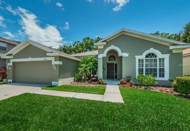 8916 N River Road, Tampa, FL 33635 (MLS #T3114016) :: Team Bohannon Keller Williams, Tampa Properties