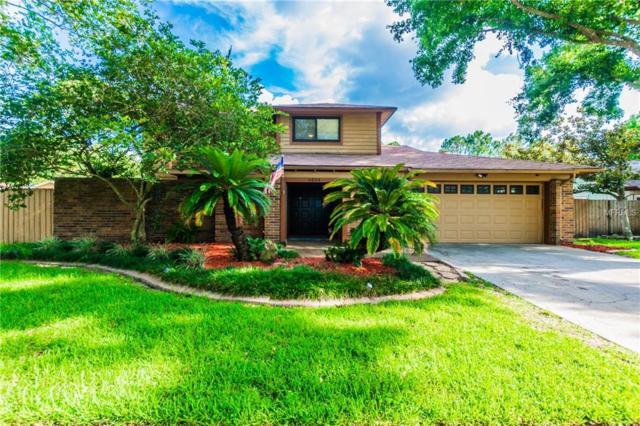 4804 Hayride Court, Tampa, FL 33624 (MLS #T3114055) :: Revolution Real Estate