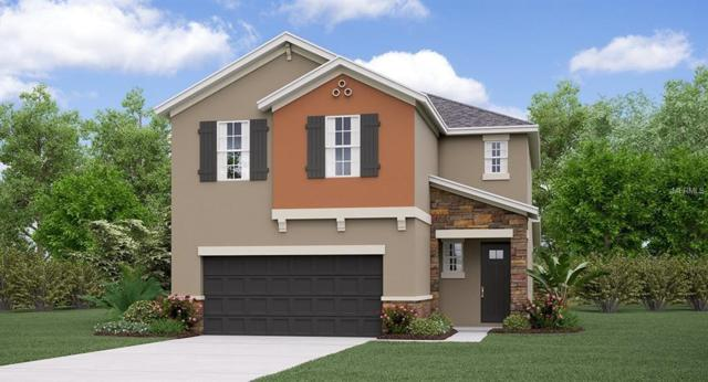 1323 Fort Cobb Terrace, Wesley Chapel, FL 33543 (MLS #T3114090) :: The Duncan Duo Team