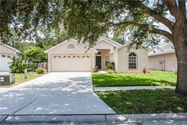 4532 Wild Plum Lane, Lutz, FL 33558 (MLS #T3114093) :: Revolution Real Estate