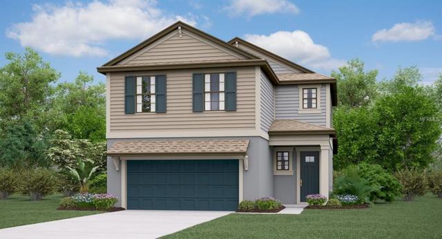 1311 Fort Cobb Terrace, Wesley Chapel, FL 33543 (MLS #T3114094) :: The Duncan Duo Team