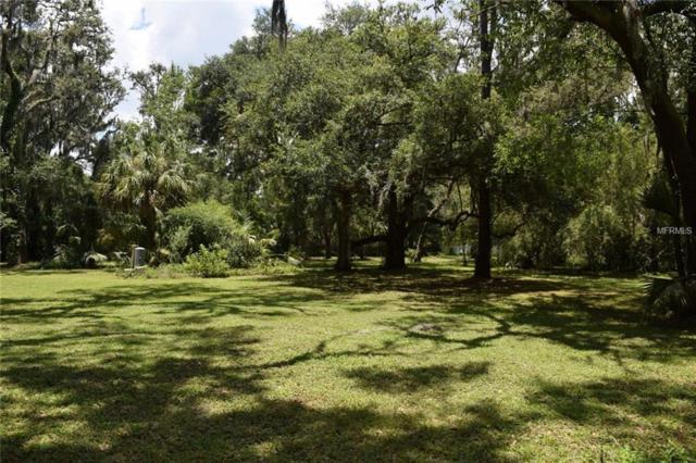 0 Little Road, Valrico, FL 33596 (MLS #T3114104) :: The Lockhart Team