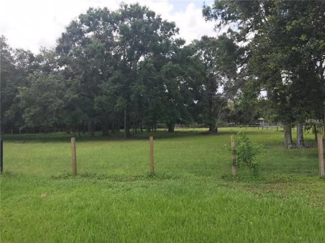 Quail Forest Drive, Tarpon Springs, FL 34688 (MLS #T3114128) :: Team Pepka