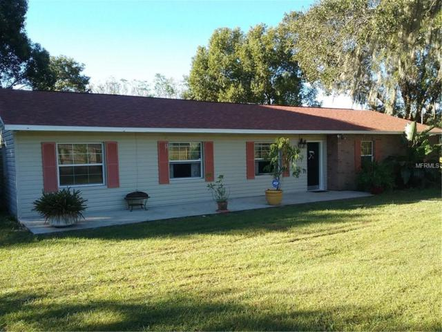 5655 Wo Griffin Road, Plant City, FL 33567 (MLS #T3114144) :: Mark and Joni Coulter   Better Homes and Gardens