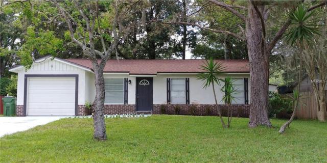 2625 Martha Lane, Land O Lakes, FL 34639 (MLS #T3114145) :: Griffin Group