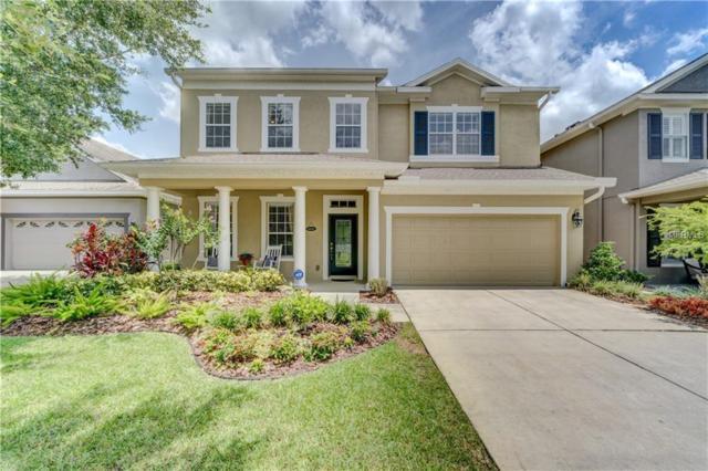 6413 Sea Lavender Lane, Tampa, FL 33625 (MLS #T3114167) :: Revolution Real Estate