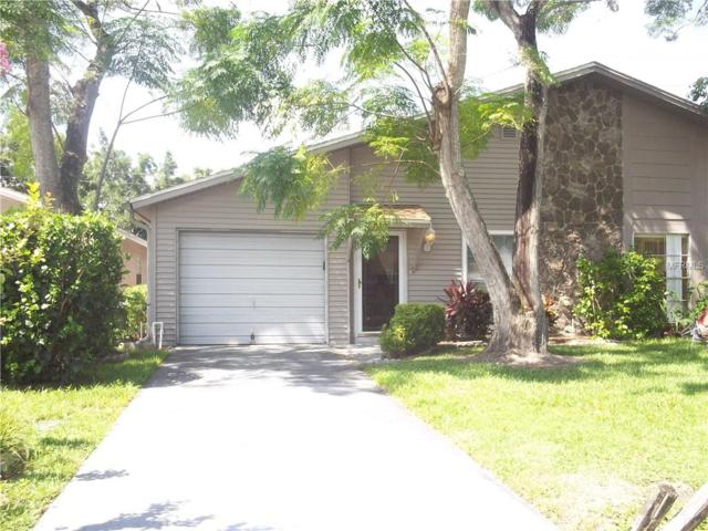 22749 Penny Loop, Land O Lakes, FL 34639 (MLS #T3114168) :: Griffin Group