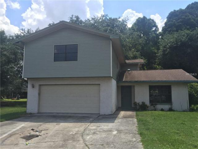8001 Glenoak Court, Tampa, FL 33610 (MLS #T3114172) :: Revolution Real Estate