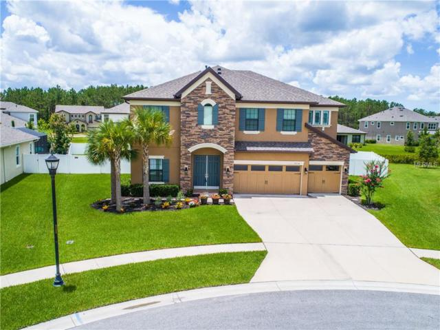 19334 Ranchview Court, Land O Lakes, FL 34638 (MLS #T3114177) :: Griffin Group