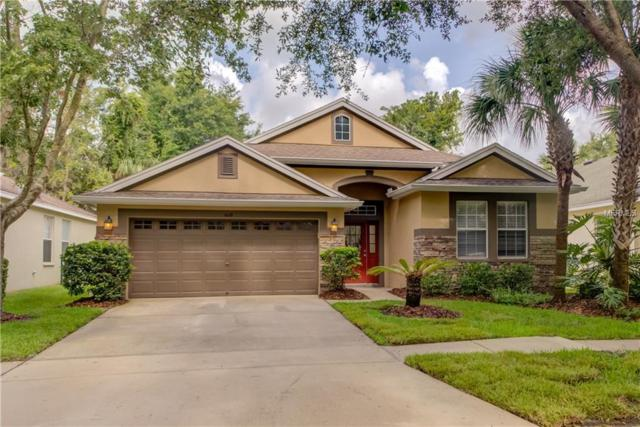 6119 Gannetwood Place, Lithia, FL 33547 (MLS #T3114191) :: The Duncan Duo Team