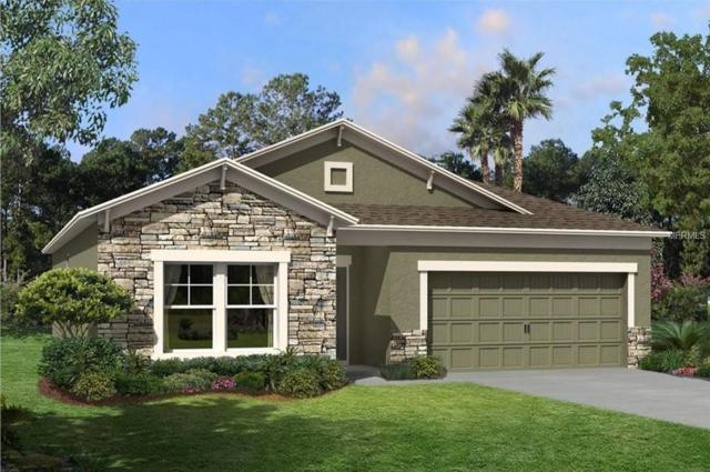 18770 Cortes Creek Boulevard, Spring Hill, FL 34610 (MLS #T3114258) :: The Duncan Duo Team