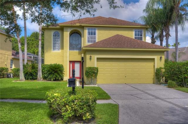 10244 Woodford Bridge Street, Tampa, FL 33626 (MLS #T3114341) :: Cartwright Realty